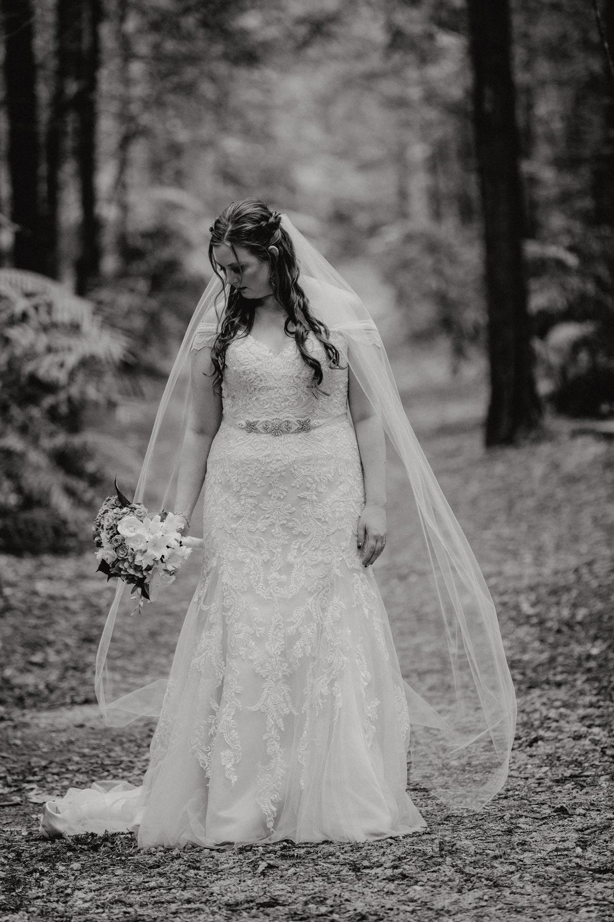 redwoods wedding photo rotorua