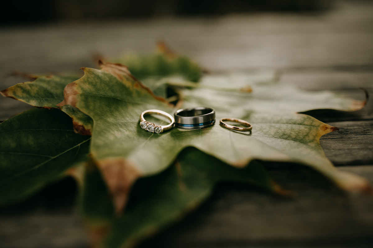 Bride and Groom rings on oak leaf at Herald Island Wharf in Whenuapai, Auckland photo by Sarah Weber Photography