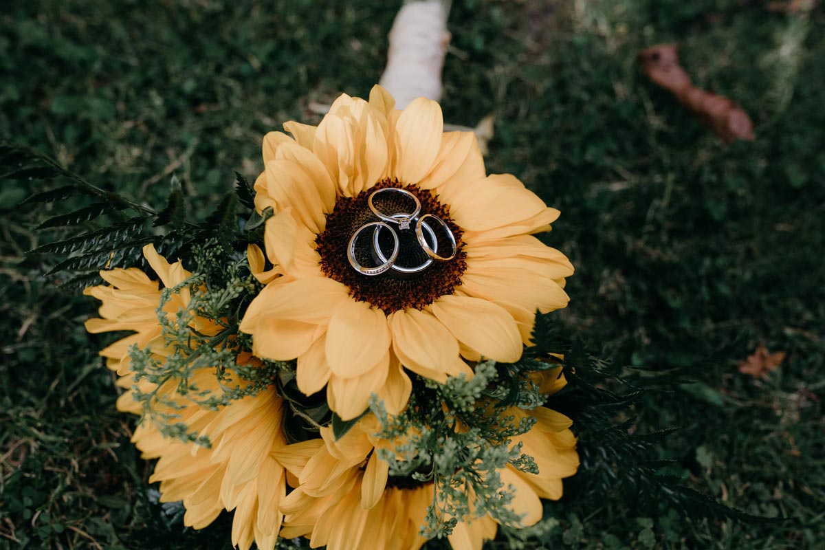 bride and groom rings on sunflower bouquet at bridgewater country estate venue in Kaukapakapa, Auckland photo by sarah weber photography